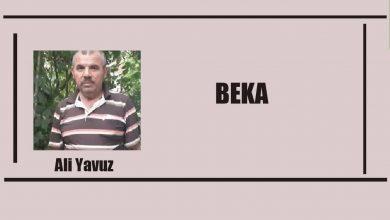 Photo of BEKA