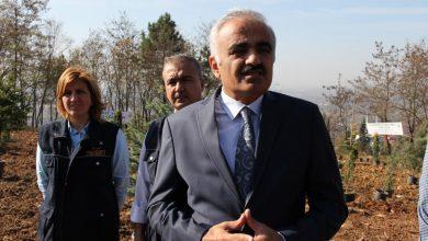 Photo of Ferizli'de Yarın 11- 11 de Kaç fidan dikilecek?