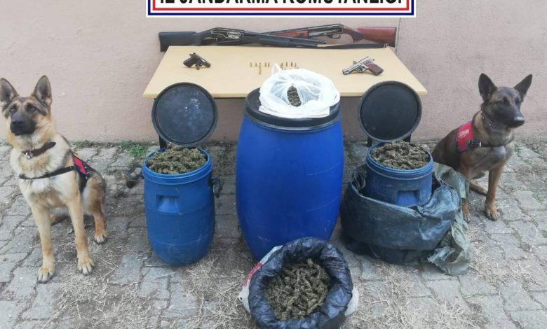 Photo of On bir kilo Esrar ele geçirildi