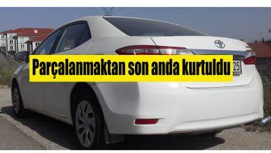 Photo of Otomobil Hırsızları Ferizli Cezaevine gönderildi