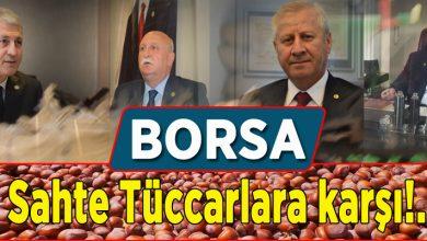 Photo of BORSA: Korsan fındık toplayanlara karşı uyardı!..