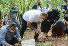 Photo of Vali Kaldırım işçilerle fındık topladı